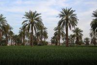 ایران زیبا