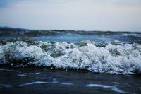 ساحل بندرعباس