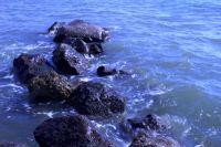 ساحل زیبای بندرعباس